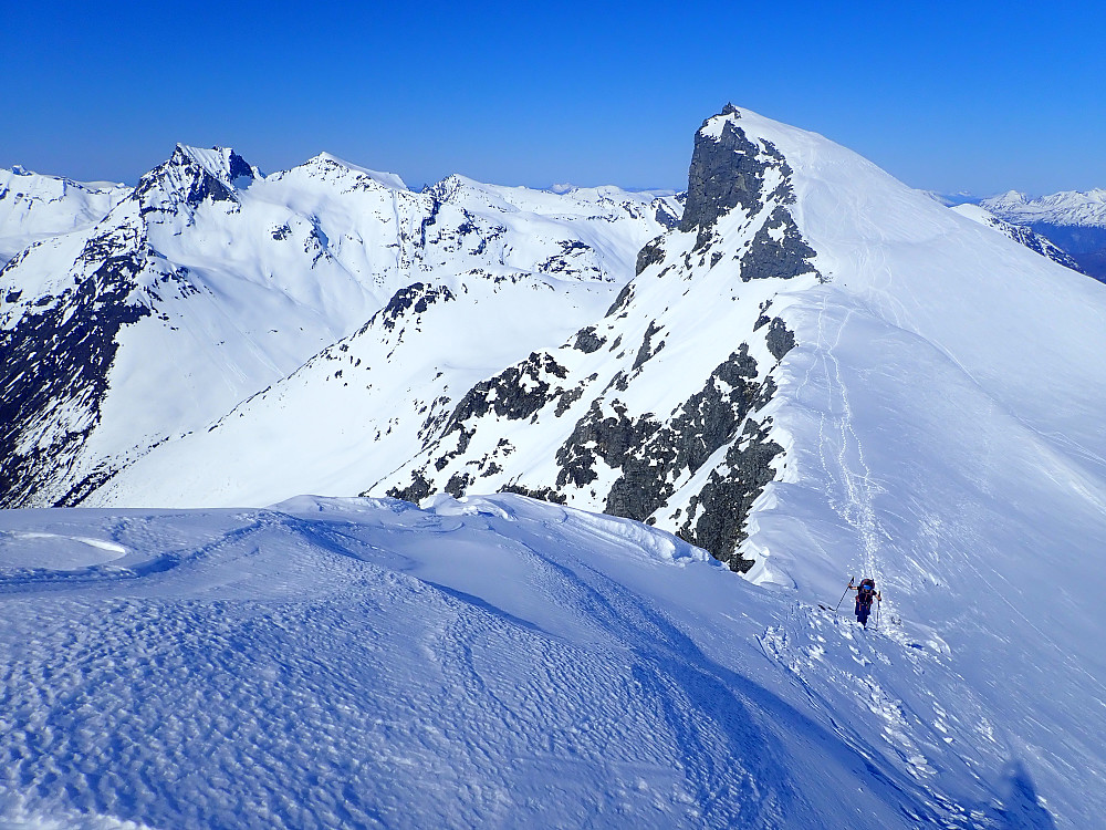 Det var litt hardt innimellom opp ryggen til Litleskruven, men det fungerte greit å beholde skia på til topps. Skruven sees bak Anja.
