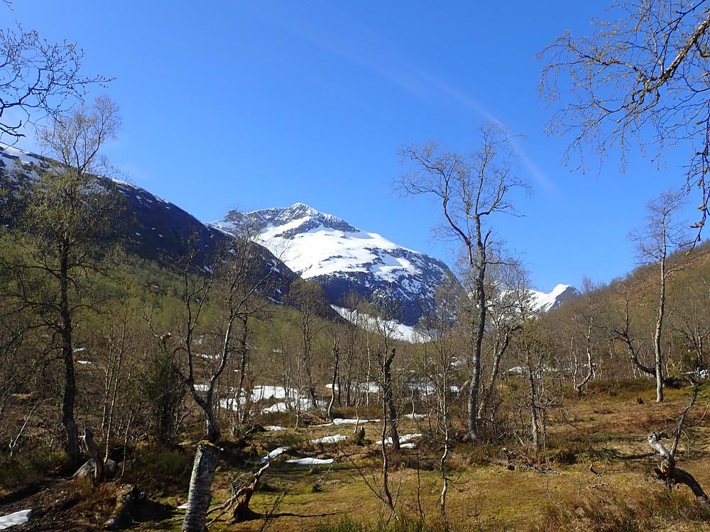 Vår i fjellet. Leirvasshornet med deler av ruta vi gikk midt i bildet.