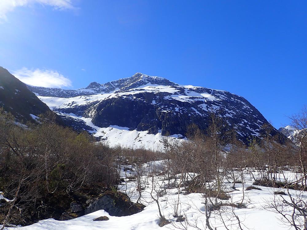 Leirvasshornet. Vi gikk opp snøstripa i dalen til venstre og krysset til høyre under toppen og ut i vestflanken.