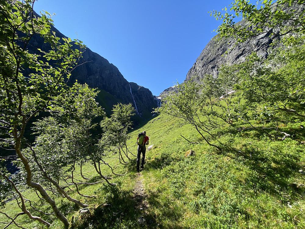 På stien opp Saufonnholet