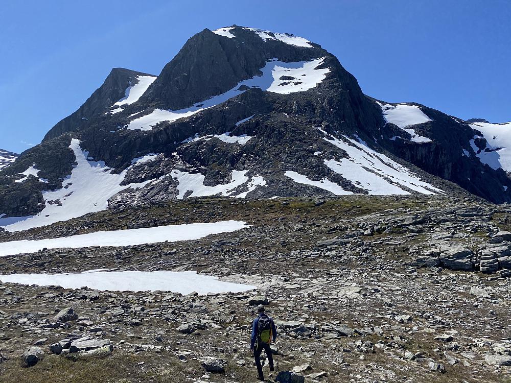 Kvanndalshøin. Lettgått og greit terreng opp her hvis man holder høyrekanten mot Kvanndalen.