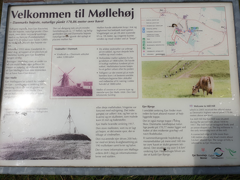 Info om Møllehøj