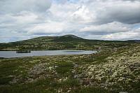 Er ved Veslsætre og Elgvatnet. Utsikt mot Liakollen.