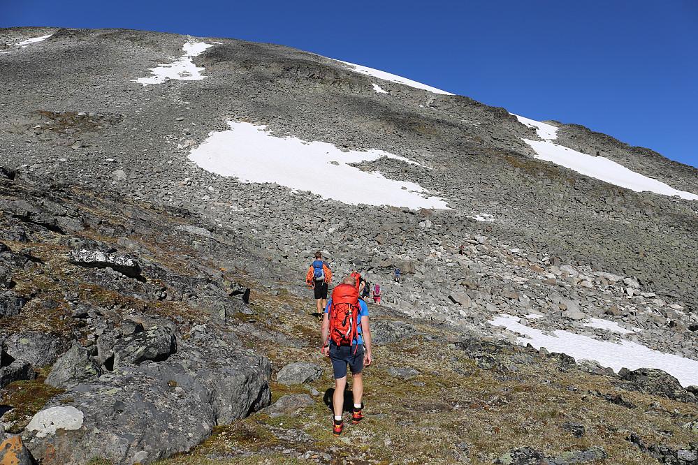 Vi søkte i retning snøfeltene, dels for avkjølingens og vannet skyld, dels for en enklere bestigning. Dessuten var dette perfekt i retning av første topp-punktet på Styggehøi (2200).