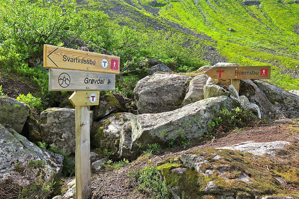 Stidele i Nedre Nyheibotn. Hald fram langs ruta til Hoemsbu.