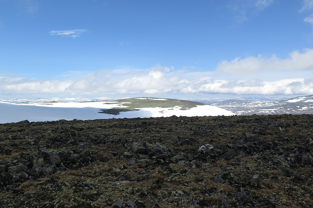 Mot den store varden som vi i ørska trudde var Leirungshøe.