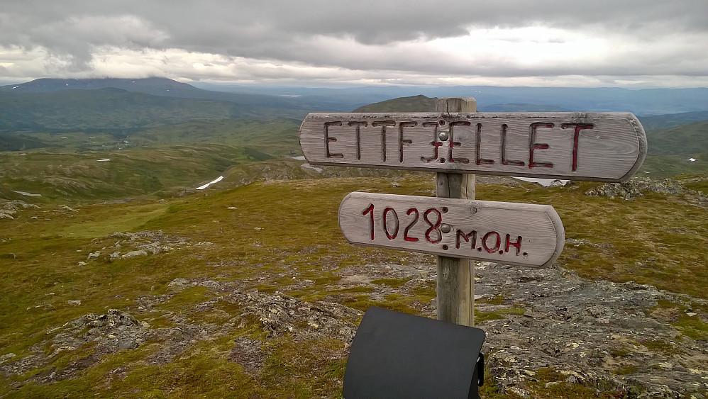 Første topp Ettfjellet. Tok ikkje mykje bilder i dag, det var sterk vind og etterkvart skodde på Fongen. For fine bilder sjekk Lise sin rapport.