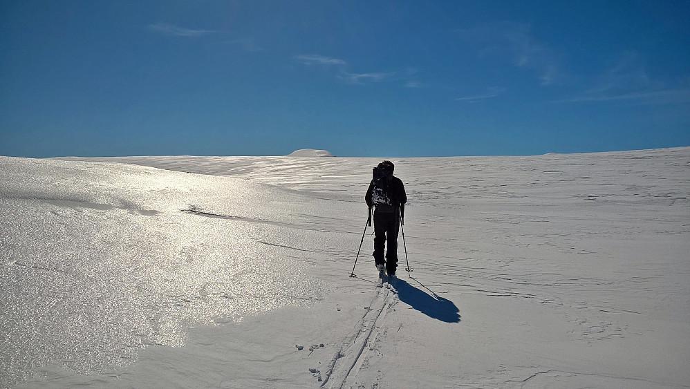 Den glinsande flata vitnar om knallhardt skiføre. Johannesberg stikk opp bak der.