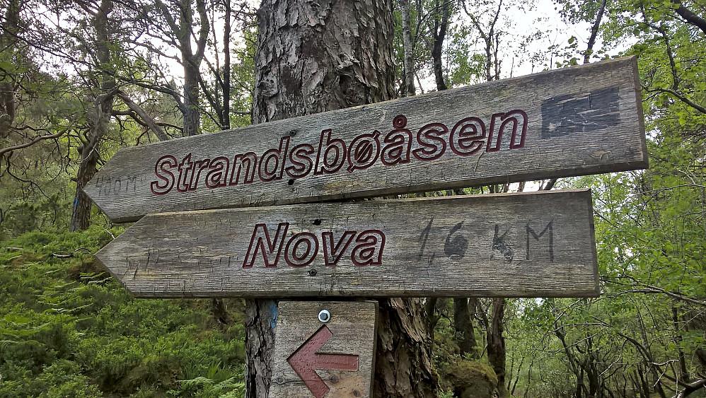 Vi fulgte sti mot Nova, utkikkspunktet ved Kvalstadfjellet