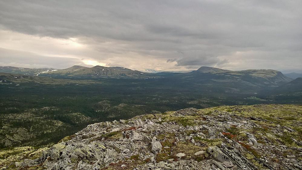 Fjøshøa og Dølbekkhøa til venstre i bildet. besøkt seinare på kveld