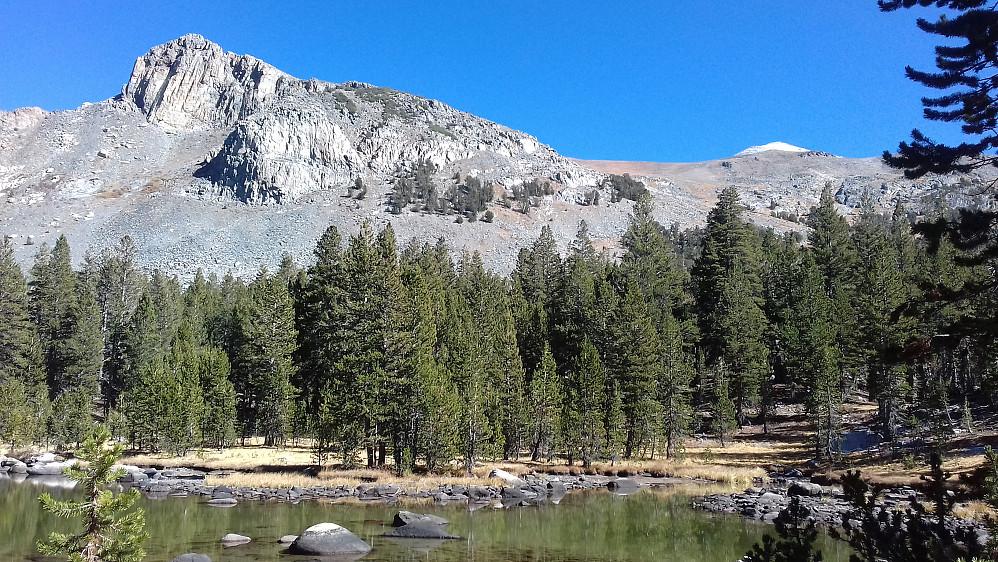 Enda mer klassisk nordamerikansk natur. Selve Mount Dana ses tittende opp bak til høyre.