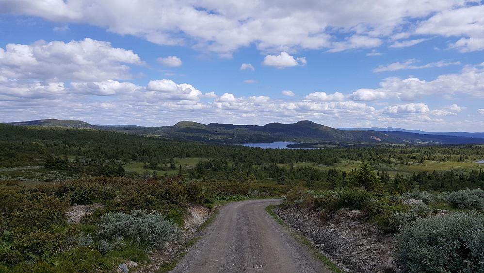 Fra Gammeldalssetra mot Killiknappen og Skjenafjellet