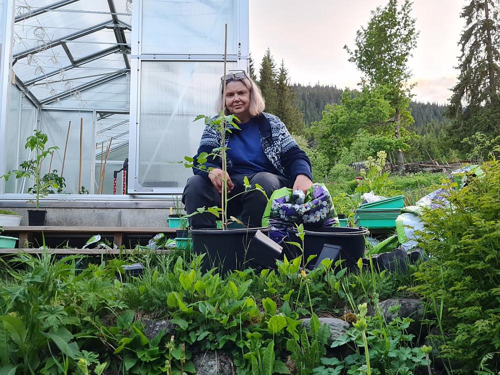 Mens jeg går på tur jobber Margrethe i hagen/drivhuset