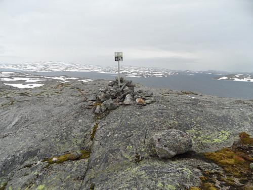 Trigpunktet 1175 moh med Blåsjøen i bakgrunnen.