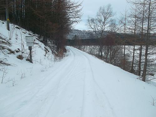 Snødekt veg med greit skiføre langs vestsida av Stølsvatnet.