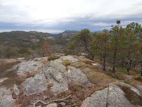 Trigpunktet på toppen av Higraheia 438. Ser NNV mot Lødalsheia i bakgrunnen.