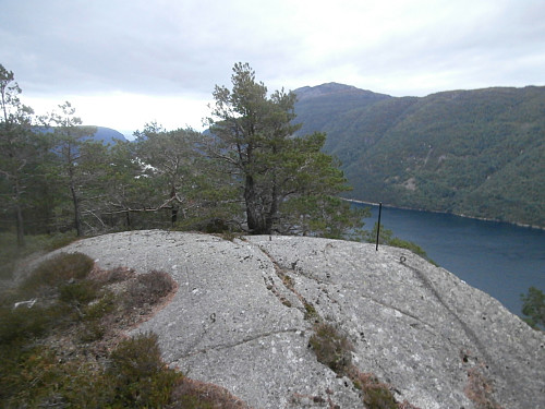 Trigpunkt på toppen av Høgafjellet 260.