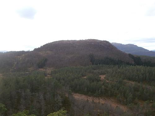Mot Åsaheia der ein kan sjå skogsveger i austsida i venstre bildehalvdel.