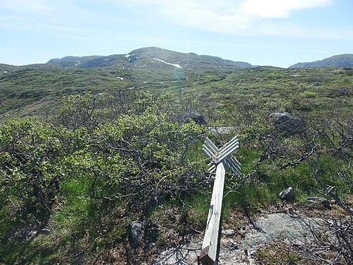Trigpunkt på 924 moh, men tilbakeblikk vestover mot Øyetjørnsknuten.