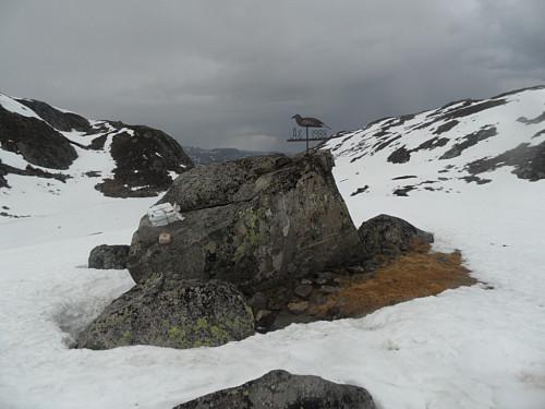 På retur nordover gjekk eg forbi denne steinen med jernfugl sør for Røyrvatnet.