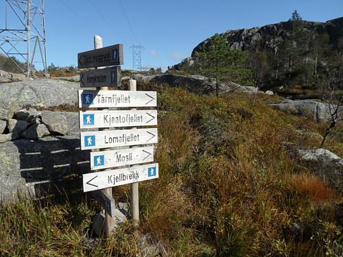 Fulgte stien mot Kjeatofjellet.