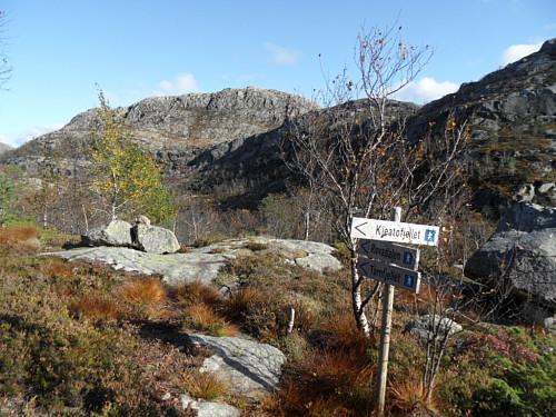 Sti til Tårnfjellet frå Rovadalen.