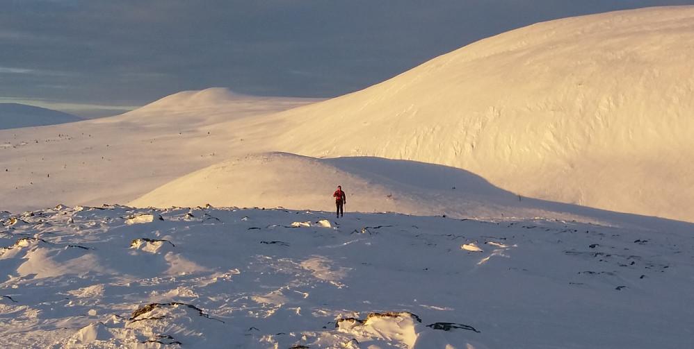 Kristine på veg opp mot Skardhamrane nord, med Slettflåhøa i bakgrunn