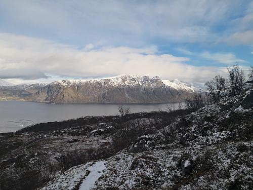 Toppaksla på Grytøya