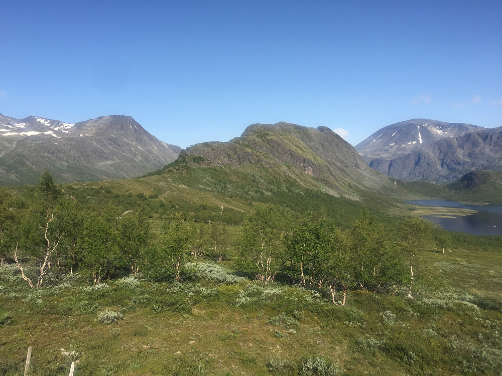 Fra starten med Knutshøe.