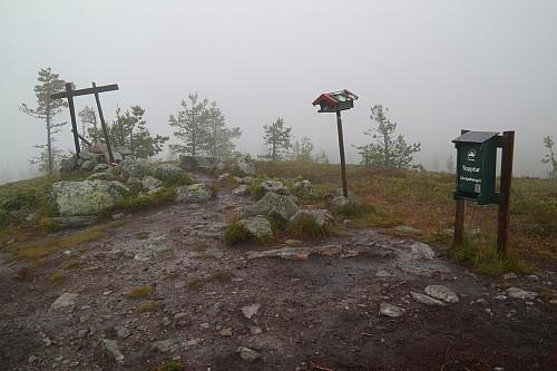 02.08.2015 - På toppen av Ulvsjøberget (854), i tåke og regnvær.