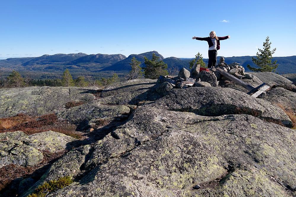 På toppen av Sveinsbuvarden (746). Bak til venstre er Skrimfjella.
