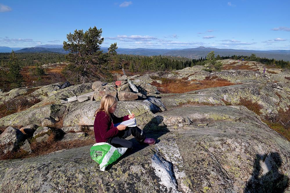 Frida skriver oss inn i boka på toppen av Sveinsbuvarden (746). I bakgrunnen til høyre ses Jonsknuten (904).