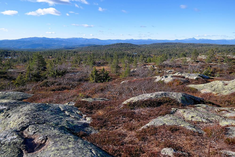 Utsikt vestover fra Sveinsbuvarden (746).