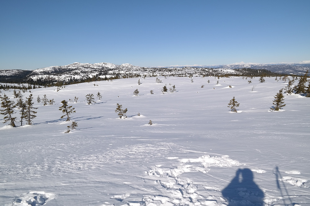 Utsikt vestover fra toppen av Stølefjell (750). Styggmann (872) er høyest i bakgrunnen til venstre.