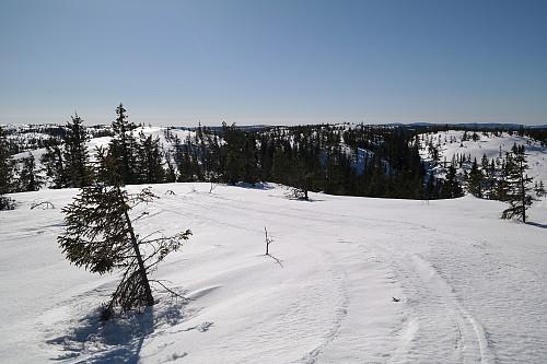 Mot sør, fra toppen av Stølefjellet Nordvest (743). Den lyse kollen til venstre er Stølefjellet Nord (742).