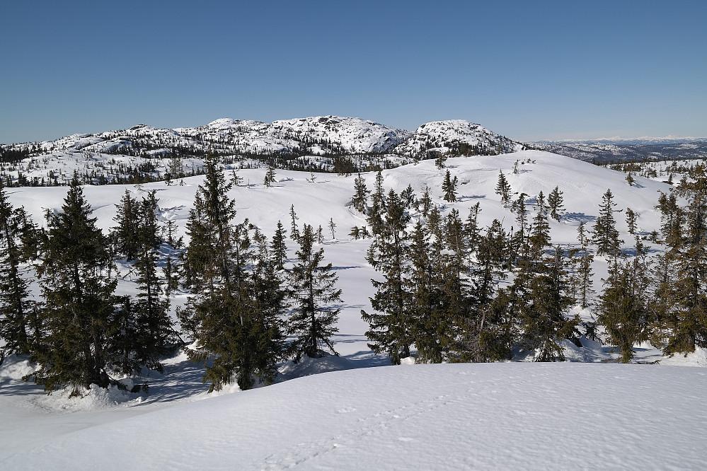 På Evjuseterfjellet Østtoppen (757), med utsikt vestover. Den snaue kulen ganske nærme til høyre i bildet, er Evjuseterfjellet trig.punkt (758). I bakgrunnen til venstre er Styggmann (872) høyest.
