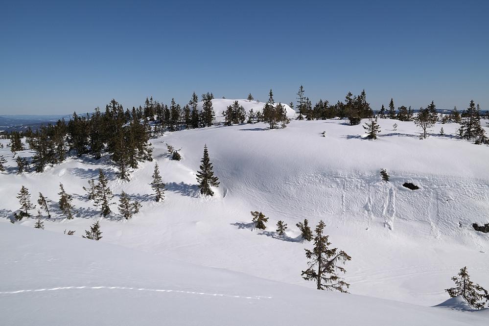 Evjuseterfjellet Østtoppen (757) sett fra sørvest.