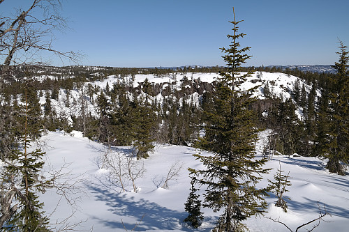 Jeg er på Svarttjernhaugen (669) og ser mot den flate toppen på Dulpeknatten (663).