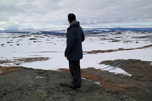 Øyvind skuer mot Jotunheimen fra Nystølvarden.