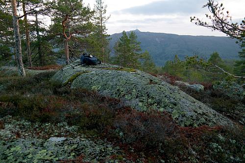 På Gravaråsen (577). I bakgrunnen er Jonsknuten (904).