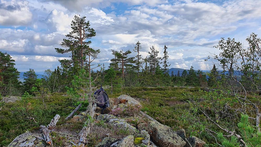 Mot sør, sett fra høyeste punkt på Åslandåsen (680).