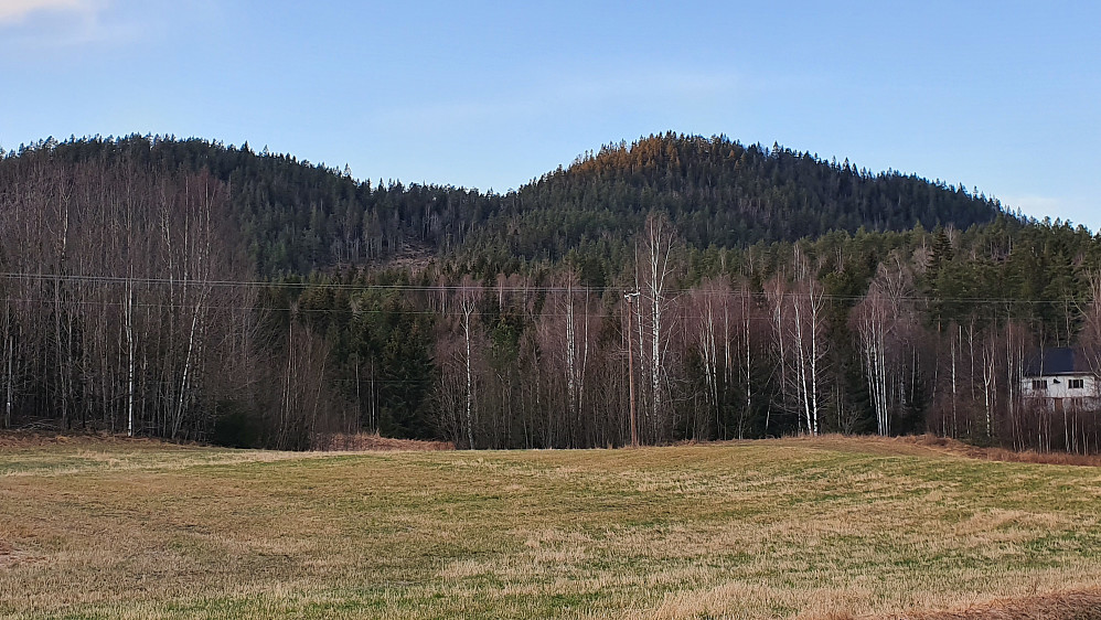 Bjørbekkollen (257) til venstre, og Tiurkollen (283) til høyre. Sett fra Stavdalvegen, ved Åbjørnsrød.