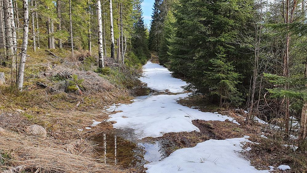 Det lå noe snø i traktorveien fra 250 meters høyde. Vått var det også enkelte plasser.