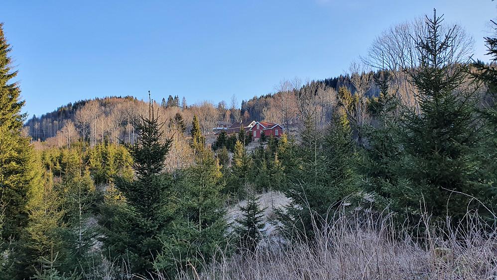 Midt i bildet er Støvland, sett fra sør, i skogen like før jeg kom opp på grusveien.