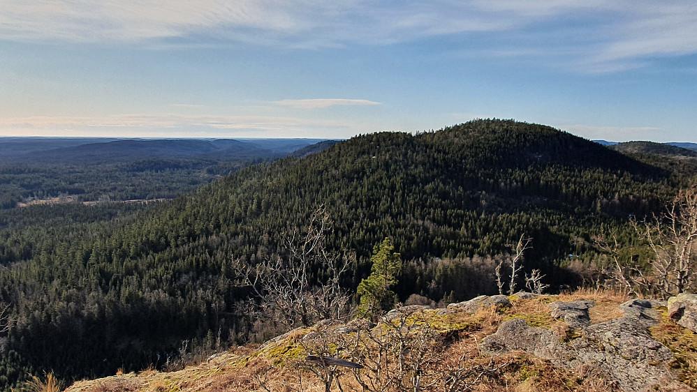 Utsikt sørover fra Høymyrpynt. Toppen til høyre er Holtehedde (405).