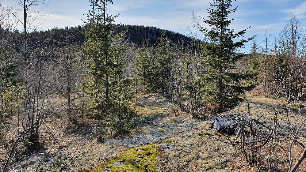 På toppen av Ulaåsen (315). Åsen i bakgrunnen er Holtehedde (405).