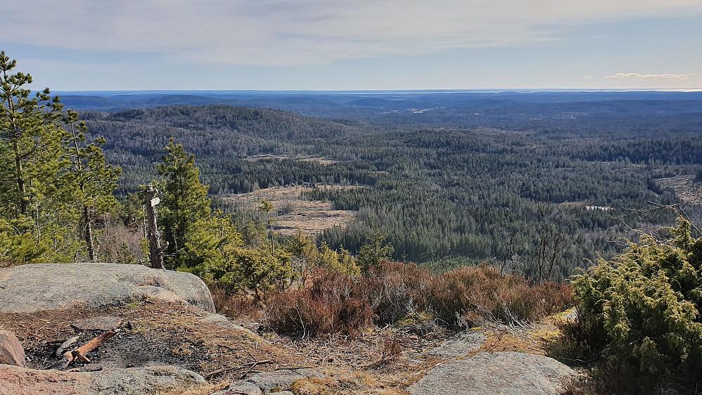 Det flotte utsiktspunktet litt sørøst for toppen av Holtehedde (405).