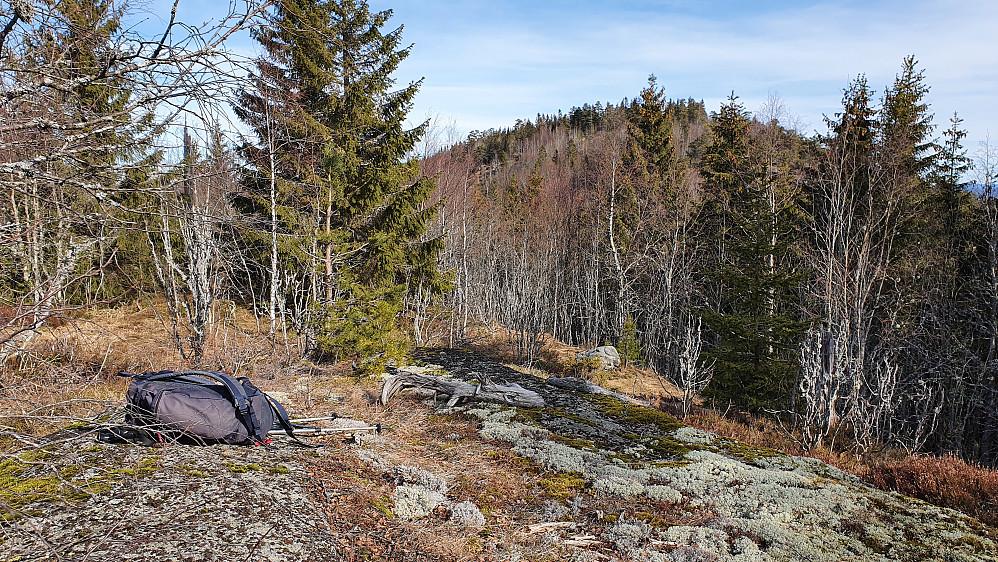 På toppen av Åsvannskarvene (369). I bakgrunnen til høyre er Holtehedde (405).
