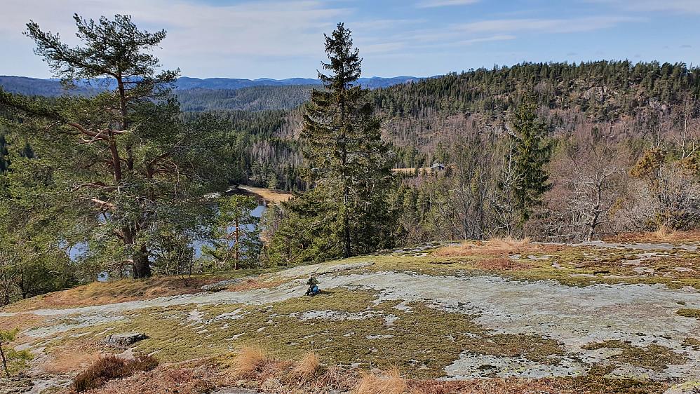 Oppe på ryggen nord for Åsvannet, som ses nedenfor mellom trærne. Åsen i bakgrunnen helt til høyre er Grasås (356).