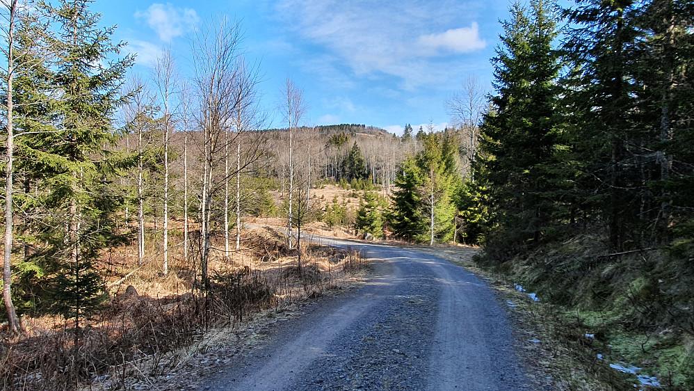 Toppen langt bak og midt i bildet, er Høymyrpynt (379). Sett fra grusveien rett nord for Hibergås (243).